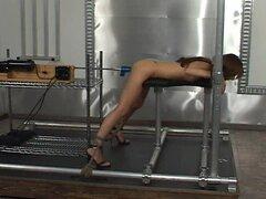 Bondage y máquinas de follar (joselyn pink) -16