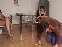 Serf Sissy obtiene un tratamiento de esclavos en el sexo POV video, bastante desafortunado thrall obtiene su caliente dominas al boss le alrededor de la casa en este bonito rizado femdom POV video.
