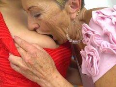 Cachondas caseras lesbianas, escena xxx de abuelas,
