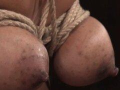 Sub Breastbonded ébano refrenado