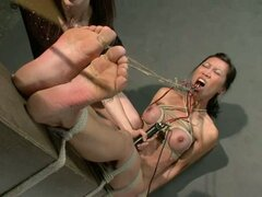 Cables de electrodo reemplazar la potente máquina puta - Princess Donna Dolore, Tia Ling