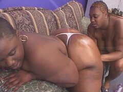 Gordas lesbianas negras son lickers chochos