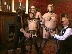Newbie chicas muestran sus cuerpos Sexy clip BDSM